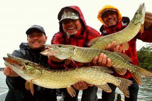 pike fishing 300x200 Home