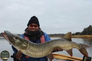 pike on the fly 300x200 Photo