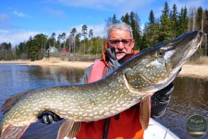 record pike 300x200 Photo